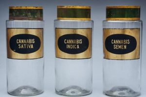 cannabis collection